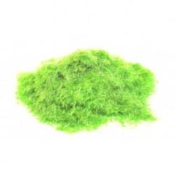 Модельная трава: полевая